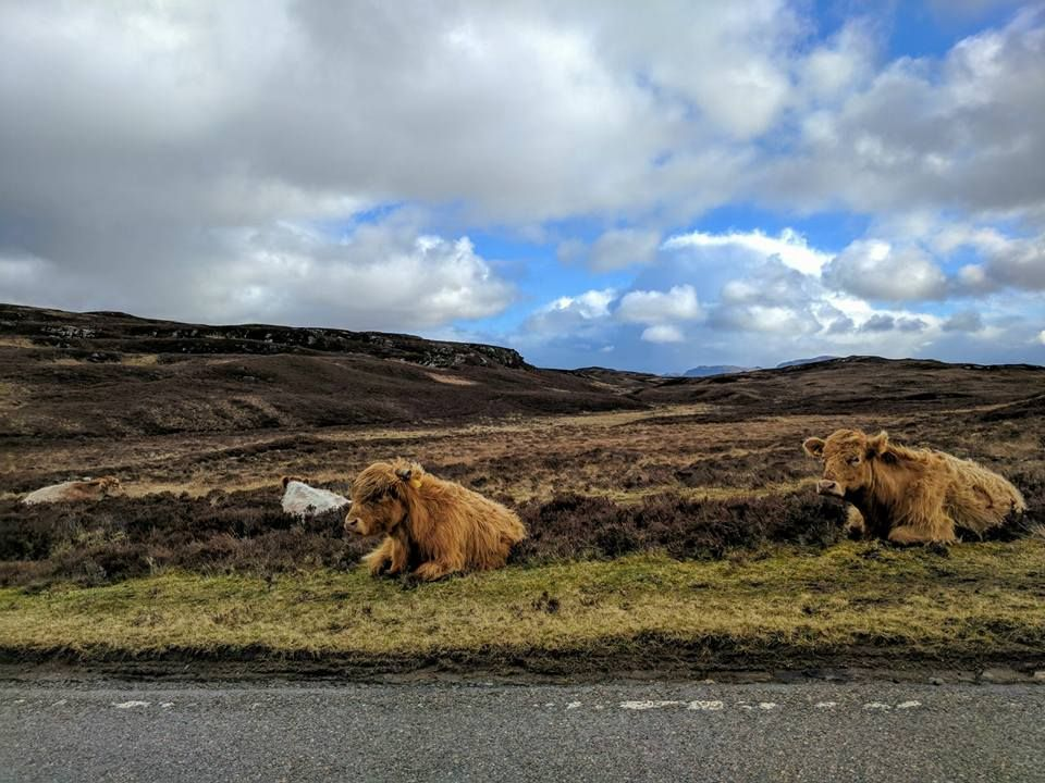 bettyhill, Dunnet Head e l'estremo Nord della Scozia